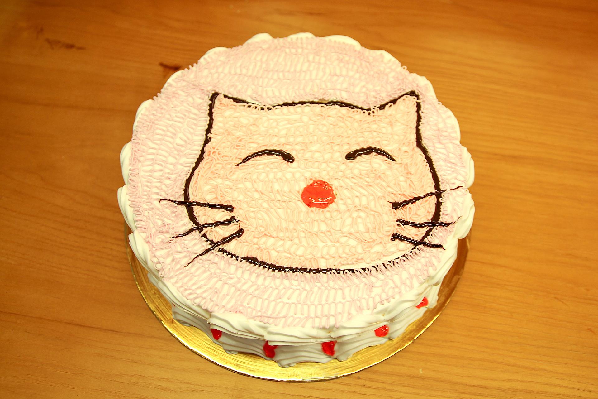 Mèo mimi